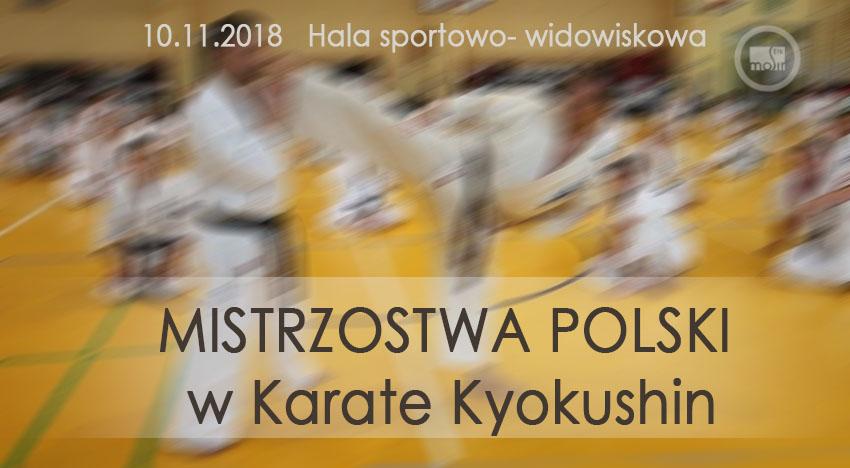 karate_kyokushin