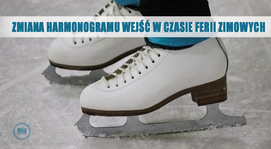 skates-4199003_1280